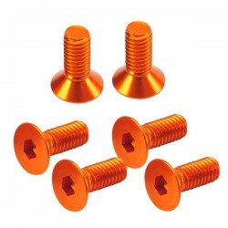 Flat Head Hex Screw orange 3x8mm (6)